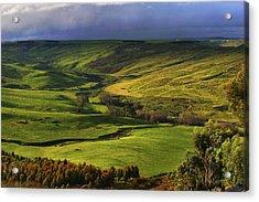 Rowsley Valley Acrylic Print by David Hibberd