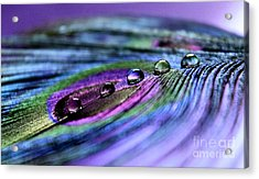 Soul Reflections Acrylic Print