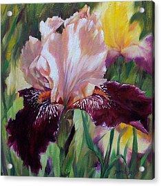 Royal Iris Acrylic Print by Donna Munsch
