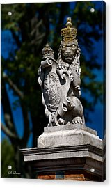 Royal Lion Acrylic Print by Christopher Holmes