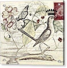 Royal Mockingbird Acrylic Print by Elizabeth Mix