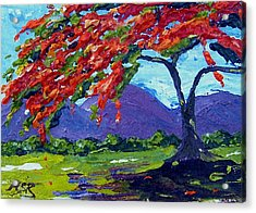 Royal Poinciana Palette Oil Painting Acrylic Print by Maria Soto Robbins