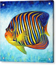 Royal Queen Angelfish Acrylic Print