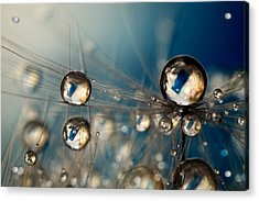 Acrylic Print featuring the photograph Royal Sea Blue Drops by Sharon Johnstone