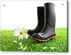 Rubber Boots With Daisy In Grass Acrylic Print by Sandra Cunningham