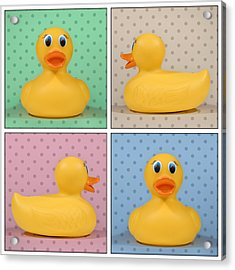 Rubber Ducky Acrylic Print by Scott Norris