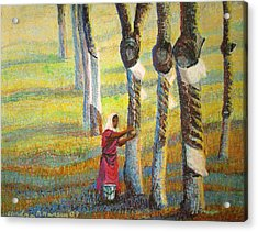 Rubber Tapping At Dawn Acrylic Print by Art Nomad Sandra  Hansen