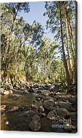 Acrylic Print featuring the photograph Rubicon River by Linda Lees
