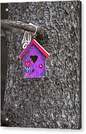 Acrylic Print featuring the photograph Rubicund.. by Nina Stavlund
