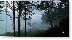 Ruby Beach II Washington State Acrylic Print