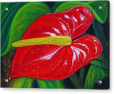 Acrylic Print featuring the painting Ruby Holiday by Debbie Chamberlin