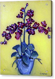 Ruby Red Orchids Acrylic Print by Sheila Tajima