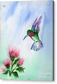 Ruby Throated Hummingbird Acrylic Print by Doris Blessington