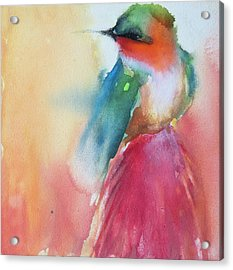 Ruby Throated Hummingbird On A Red Hot Poker Flower Wip Acrylic Print