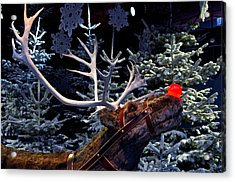 Rudolph With Your Nose So Bright Acrylic Print by Keenpress