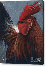 Rudy The Rooster Acrylic Print
