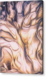 Ruffles Acrylic Print