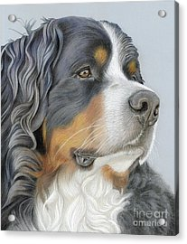 Acrylic Print featuring the painting Regal And Relaxed by Donna Mulley