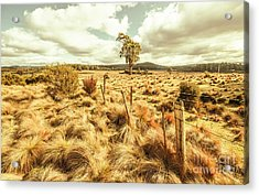 Rugged Australian Pastures Acrylic Print