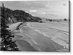 Rugged Beauty Acrylic Print by Don Schwartz