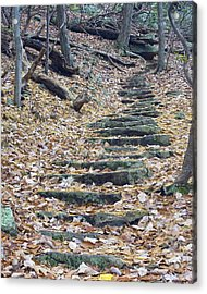 Acrylic Print featuring the photograph Rugged Path by Alan Raasch