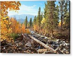 Rugged Sierra Beauty Acrylic Print