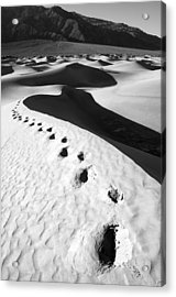 Ruined Acrylic Print by Mike Irwin
