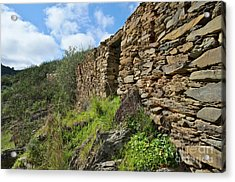 Ruins Of A Schist Cottage In Alentejo Acrylic Print by Angelo DeVal