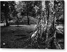 Acrylic Print featuring the photograph Ruins Of Tikal by Yuri Santin