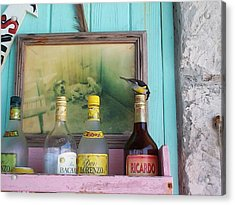 Acrylic Print featuring the photograph Rum Shack Bananaquit by Mary-Lee Sanders