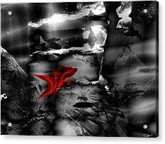 Rumble Fish To Dream Acrylic Print
