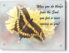 Rumi Quote-9 Acrylic Print by Rudy Umans