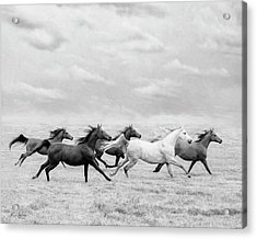 Run Away Acrylic Print