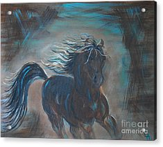 Acrylic Print featuring the painting Run Horse Run by Leslie Allen