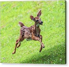 Running And Jumping Acrylic Print