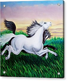 Running Free Acrylic Print by Kathern Welsh