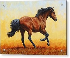 Running Horse - Evening Fire Acrylic Print by Crista Forest