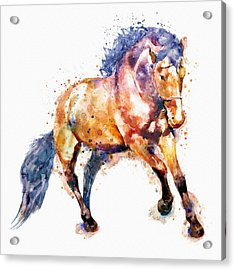Running Horse Acrylic Print by Marian Voicu
