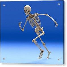 Running Skeleton, Artwork Acrylic Print