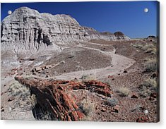 Runoff Obstacle Acrylic Print by Gary Kaylor