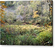 Rural Autumn West Virginia Landscape Acrylic Print by Terry  Wiley