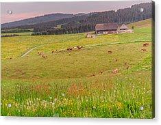 Rural Black Forest Landscape Acrylic Print