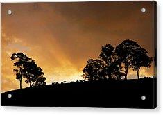 Rural Glory Acrylic Print by Mike  Dawson