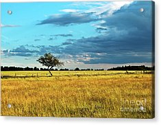 Acrylic Print featuring the photograph Rural Idyll Poetry by Silva Wischeropp