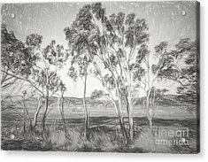 Rural Landscape Pencil Sketch Acrylic Print
