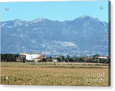 Rural Landscape With Silos Acrylic Print