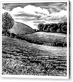 Rural Landscape, Woodcut Acrylic Print