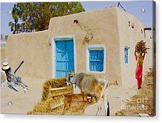 Rural Life  Acrylic Print by Manjot Singh Sachdeva