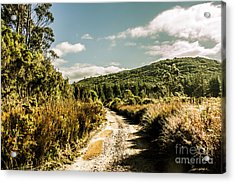 Rural Paths Out Yonder Acrylic Print