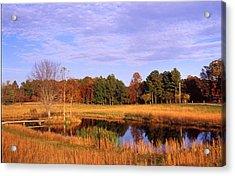 Rural Pond - 1 Acrylic Print by Randy Muir